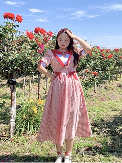 Plus Size Flowery Short Puff Sleeves Bowknot Decorative Red Plaid Dress by Cheese Day