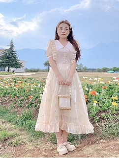Plus Size Dim Xingchen Pointed Collor Short Puff Sleeves Embroidered Dress by Cheese Day