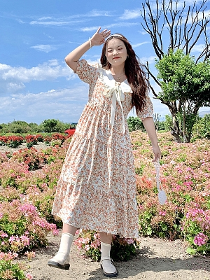Plus Size Cream Floral Navy Collar Short Sleeves Floral Print Dress by Cheese Day