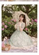 Flower Mist in the Clouds Vintage V-neck Lantern Sleeves Long Dress by Li