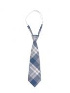 Ikematsu Taka JK Uniform Plaid Bow Tie / Tie by To Alice